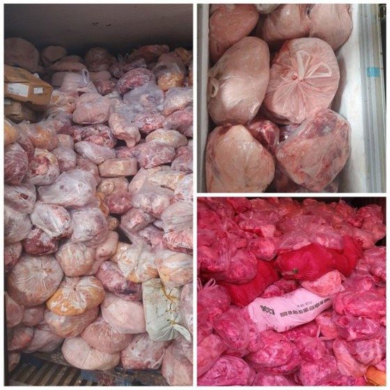 發現運載感染非洲豬瘟豬肉集裝箱 ảnh 1