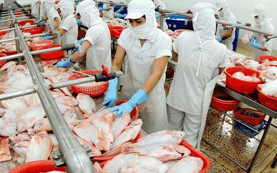 取代豬肉的食品豐富多樣化 ảnh 1