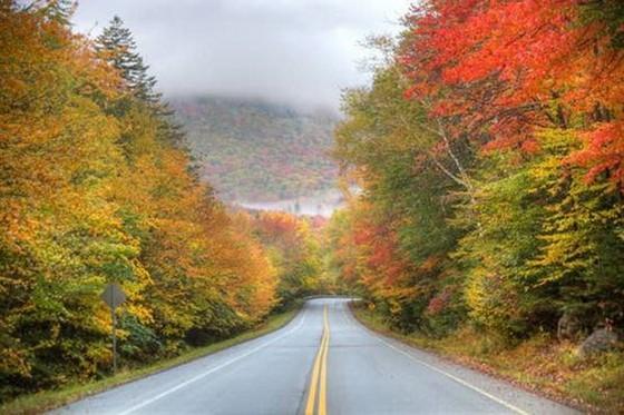 美國19條風景秀麗高速公路(上) ảnh 6