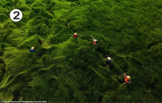 2020年航空攝影大獎:多張作品攝於越南 ảnh 2