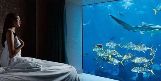 世界11個巨大而神奇的水族館(上) ảnh 2