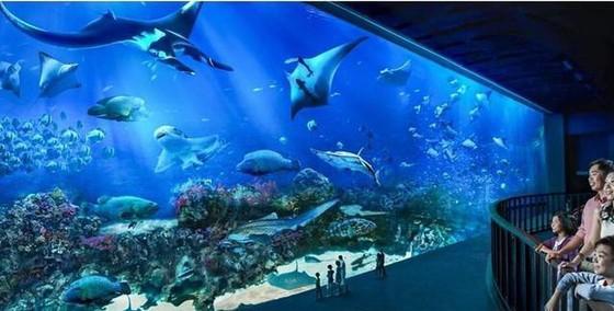 世界11個巨大而神奇的水族館(下) ảnh 4