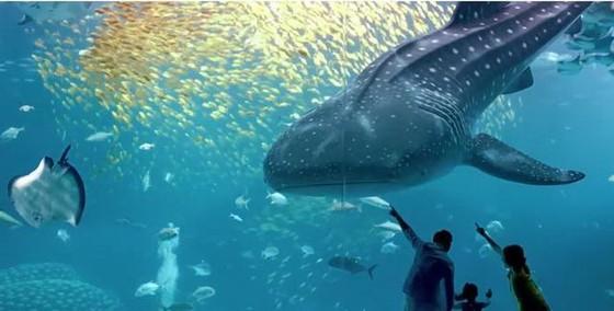 世界11個巨大而神奇的水族館(下) ảnh 5