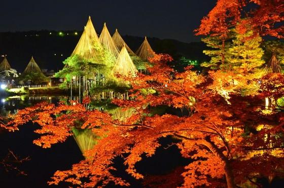 夜燈下的奇幻色彩!日本三大名園——兼六園的秋與冬! ảnh 4