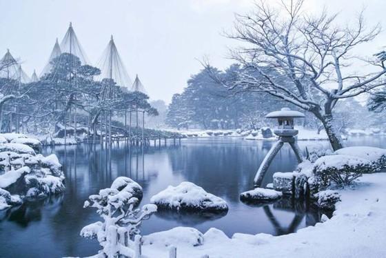 夜燈下的奇幻色彩!日本三大名園——兼六園的秋與冬! ảnh 6
