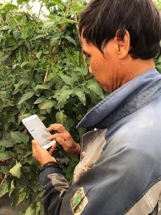 越南年轻人口驱动消费 ảnh 1