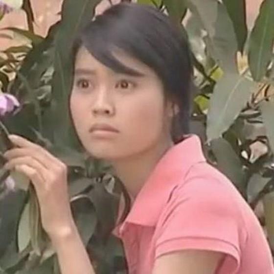 越南明星辛酸史 ảnh 1