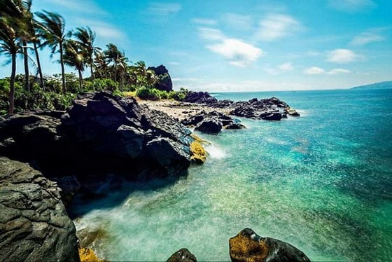 美麗的安平島 ảnh 1