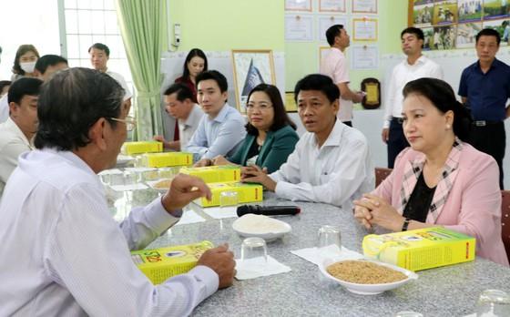 Chủ tịch Quốc hội Nguyễn Thị Kim Ngân thăm cơ sở sản xuất giống lúa ST25 ảnh 1