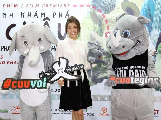 Ra mắt phim Phạm Hương kêu gọi bảo vệ loài voi ảnh 3