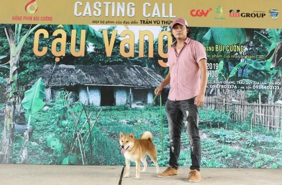 Tìm được 'diễn viên 4 chân' cho dự án điện ảnh Cậu Vàng ảnh 2