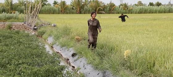 """Vừa ra mắt đạt doanh thu """"khủng"""" tại Việt Nam, """"Thất sơn tâm linh"""" phát hành thị trường nước ngoài ảnh 1"""