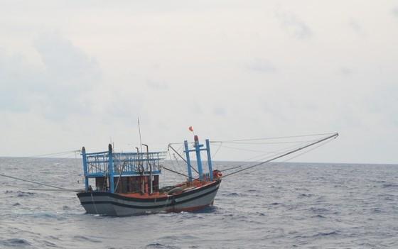 VIDEO: Vượt gió bão biển Đông cấp 12 cứu ngư dân gặp nạn  ảnh 1