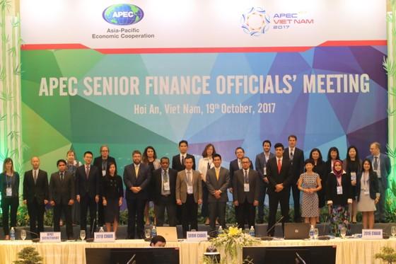 Các bộ trưởng tài chính xem xét kết quả hợp tác về bốn chủ đề ưu tiên  ảnh 3