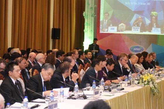 Khai mạc Hội nghị Bộ trưởng Tài chính APEC 2017 ảnh 6