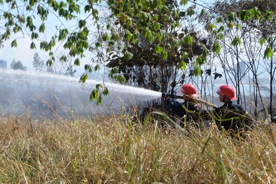 Kịp thời dập tắt đám cháy lớn trên bán đảo Sơn Trà giữa trưa ảnh 2