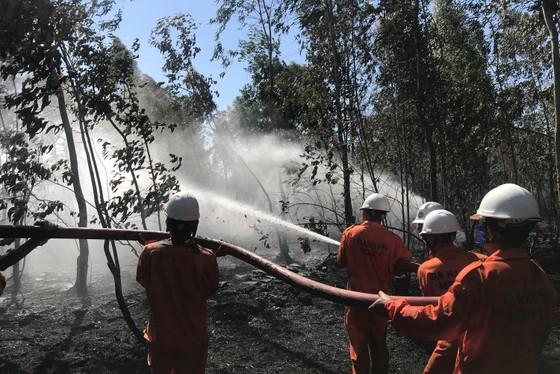 Kịp thời dập tắt đám cháy lớn trên bán đảo Sơn Trà giữa trưa ảnh 3