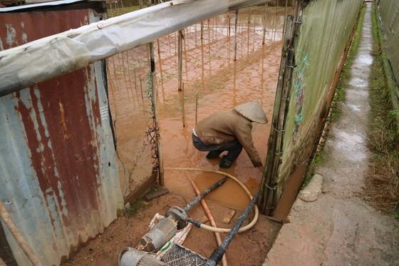 Xem cảnh ngập sâu cả mét nước sau trận mưa lớn ở Đà Lạt ảnh 7