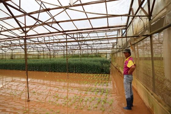 Xem cảnh ngập sâu cả mét nước sau trận mưa lớn ở Đà Lạt ảnh 8