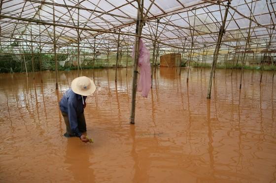 Xem cảnh ngập sâu cả mét nước sau trận mưa lớn ở Đà Lạt ảnh 5