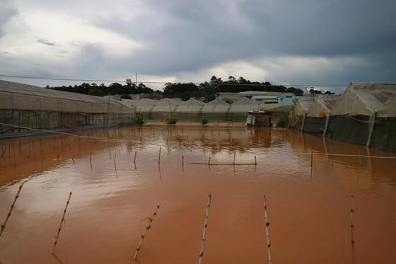 Xem cảnh ngập sâu cả mét nước sau trận mưa lớn ở Đà Lạt ảnh 6