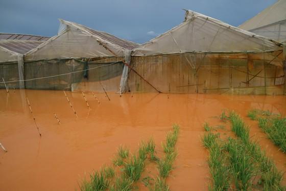 Xem cảnh ngập sâu cả mét nước sau trận mưa lớn ở Đà Lạt ảnh 1
