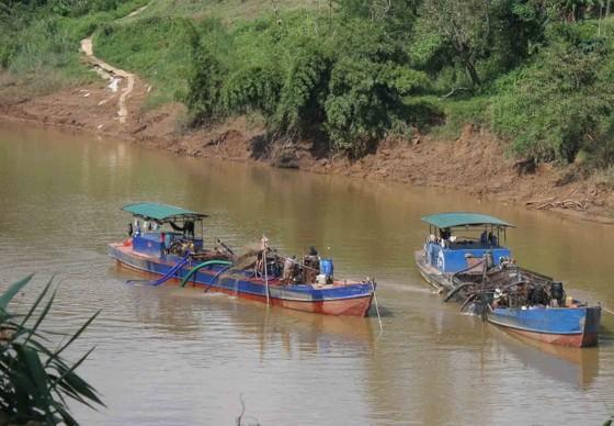 Tiếp tục tạm dừng khai thác cát trên sông Đồng Nai ảnh 1
