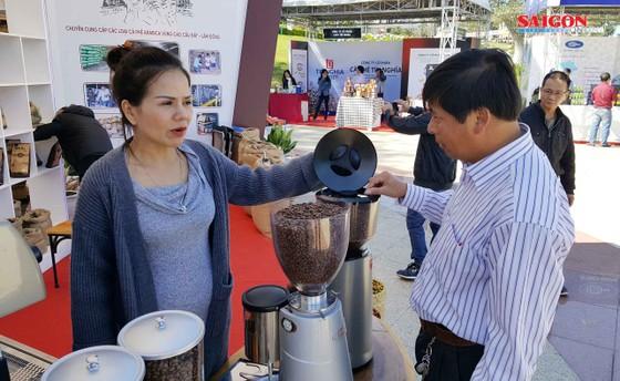 Liên kết sản xuất sẽ đảm bảo tính bền vững cho cà phê Việt Nam ảnh 2