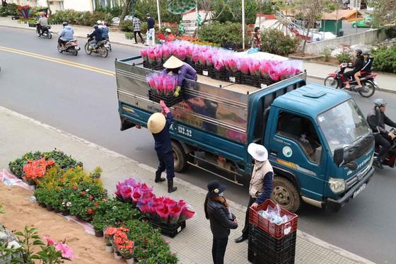 Hoa Đà Lạt tấp nập xuống phố trước thềm lễ hội ảnh 2