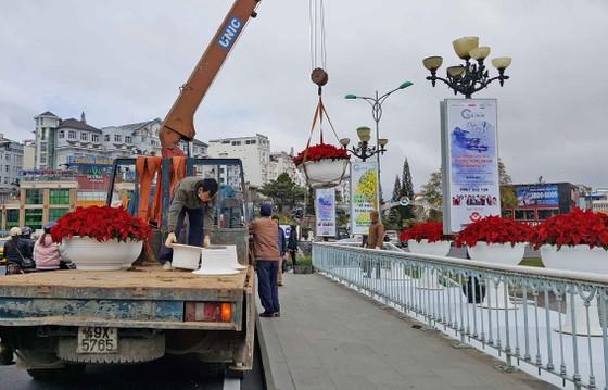 Hoa Đà Lạt tấp nập xuống phố trước thềm lễ hội ảnh 1