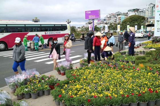 Hoa Đà Lạt tấp nập xuống phố trước thềm lễ hội ảnh 5