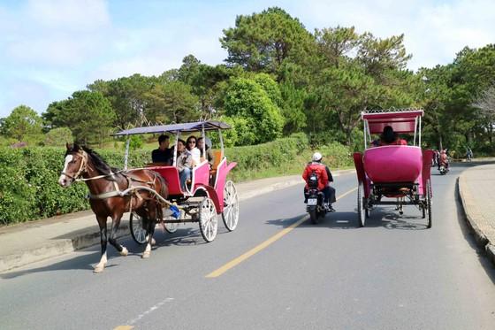 Du khách tấp nập về Đà Lạt nghỉ Tết Dương lịch ảnh 14