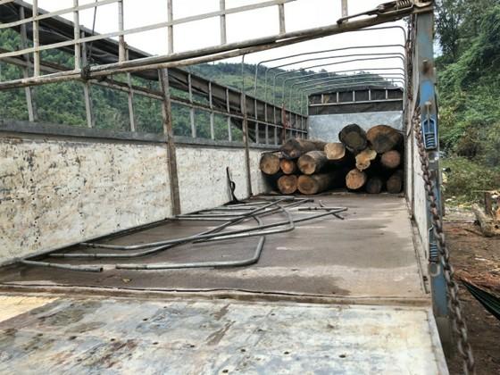 Xe cẩu ngang nhiên vào hồ thủy điện vận chuyển gỗ lậu ảnh 4