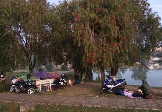 Du khách đốt củi ngủ giữa đêm lạnh Đà Lạt ảnh 1