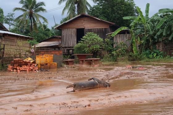 PV Báo SGGP ghi nhận tình hình cứu hộ người bị nạn vụ vỡ đập tại Lào ảnh 13