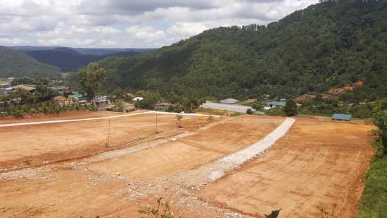 Vô tư san ủi đất, làm đường trái phép ở Đà Lạt ảnh 1