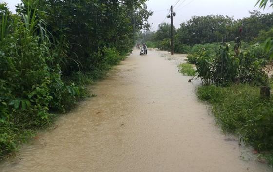 Mưa lớn khiến nhiều khu vực ở Lâm Đồng ngập sâu ảnh 3