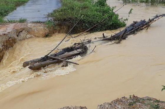 Mưa lớn khiến nhiều khu vực ở Lâm Đồng ngập sâu ảnh 4