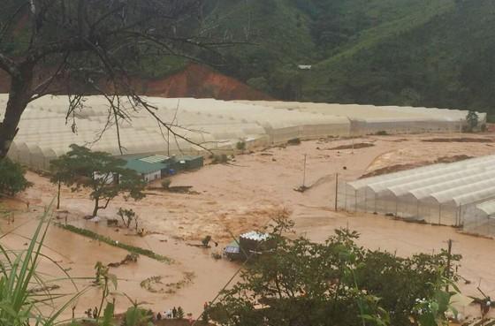 Mưa lũ làm hơn 1.350 căn nhà ở Lâm Đồng bị ngập ảnh 6