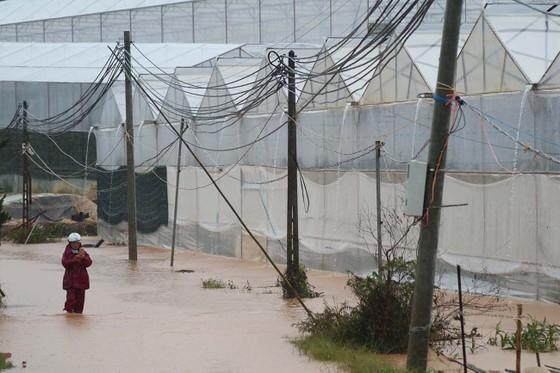 Mưa lũ làm hơn 1.350 căn nhà ở Lâm Đồng bị ngập ảnh 7