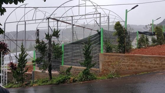 Bị xử phạt, điểm tham quan du lịch trên đèo Mimosa ( Đà Lạt) vẫn thi công ảnh 2