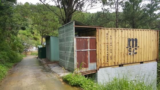 Hơn chục căn nhà trái phép 'mọc' trong rừng thông ở Đà Lạt ảnh 7
