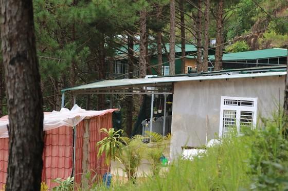 Hơn chục căn nhà trái phép 'mọc' trong rừng thông ở Đà Lạt ảnh 6