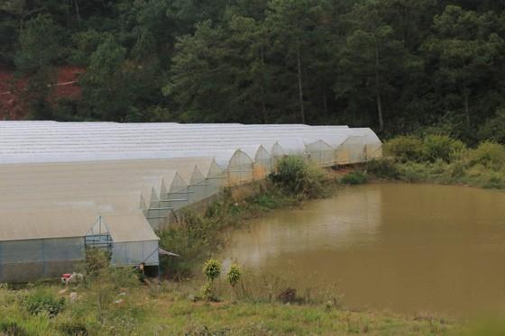 Hồ cấp nước sinh hoạt cho Đà Lạt ngày càng ô nhiễm ảnh 5
