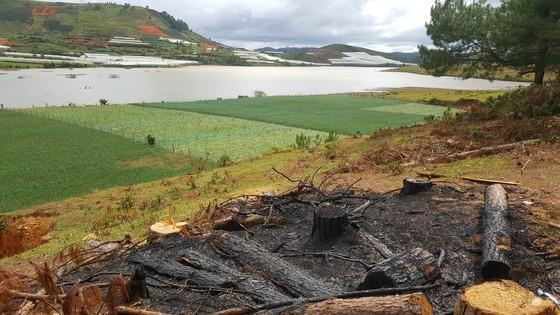 Hồ cấp nước sinh hoạt cho Đà Lạt ngày càng ô nhiễm ảnh 12