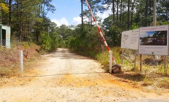 Lại thêm dự án tại hồ Tuyền Lâm – Đà Lạt phá rừng làm khu nghỉ dưỡng ảnh 1