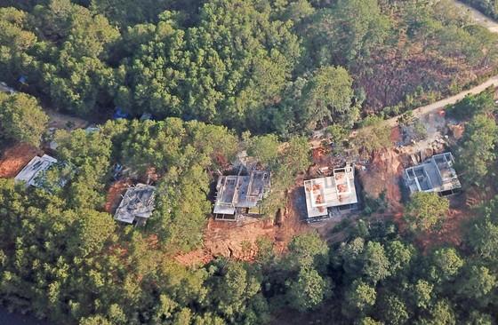 Lại thêm dự án tại hồ Tuyền Lâm – Đà Lạt phá rừng làm khu nghỉ dưỡng ảnh 2