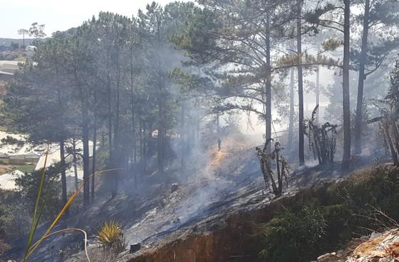 Liên tiếp xảy ra hỏa hoạn ở Đà Lạt ảnh 2