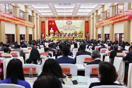 Lâm Đồng cần tiên phong trong phát triển nông nghiệp hữu cơ ảnh 1