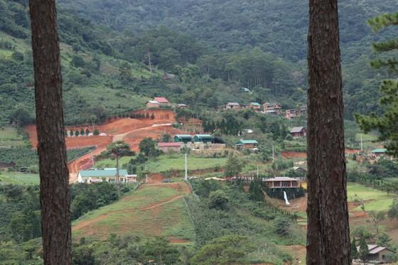 Lâm Đồng chỉ đạo xử lý nghiêm vụ hàng chục căn nhà xây trái phép giữa đất rừng ảnh 2